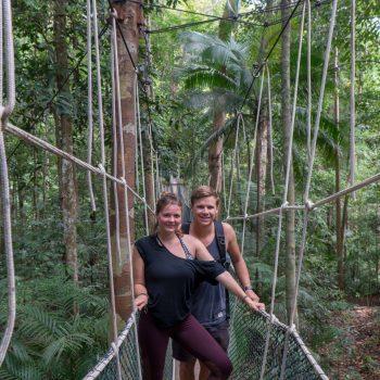 Jour 42 : Une journée dans la jungle de Taman Negara